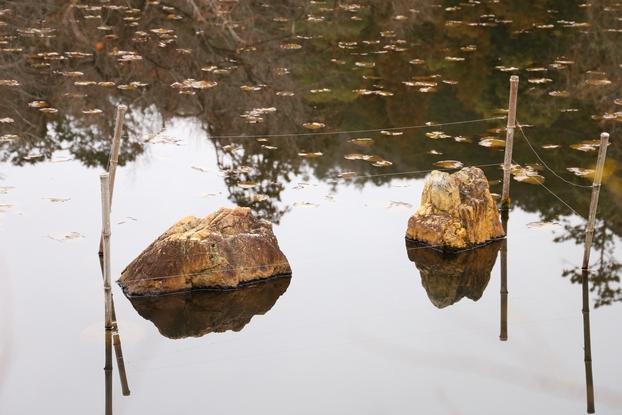 龍安寺庭園・鏡容池(岩島)