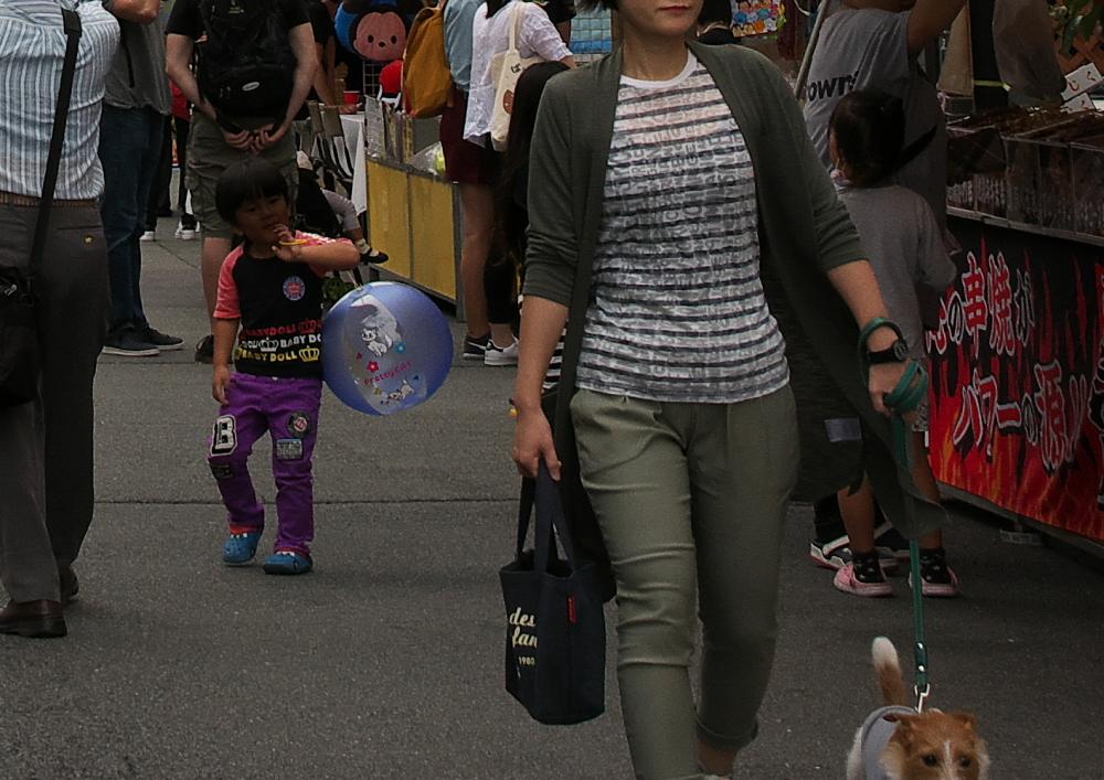 芋茎祭り (1)