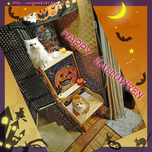 Halloween1003.jpg