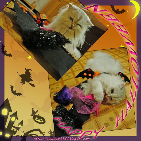 Halloween1011.jpg