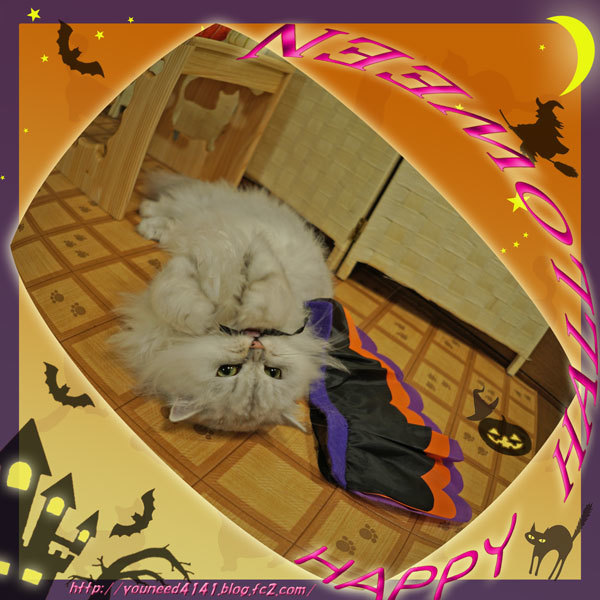 Halloween1014.jpg