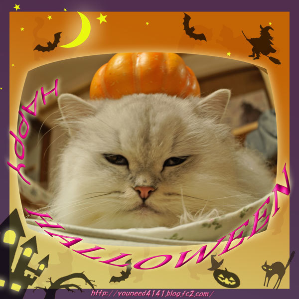 Halloween1019.jpg