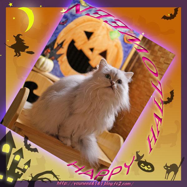Halloween2005.jpg