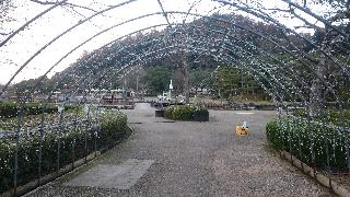 東郷、メダカ公園