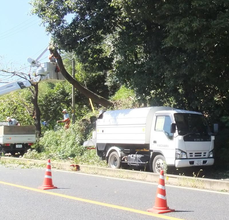 k県道沿い伐採作業が行われた3