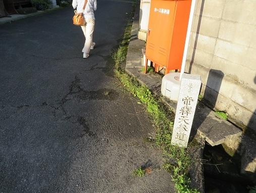 2017,南丹市三か所湧水 054-2s