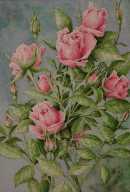 バラ 1811