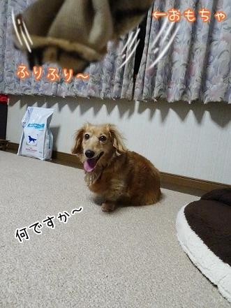 kinako7572.jpg
