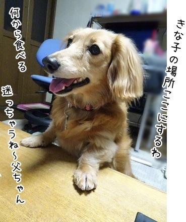 kinako7704.jpg