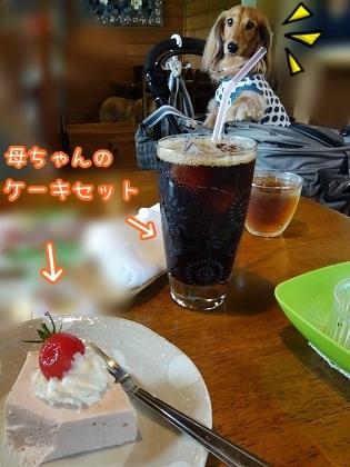 kinako7875.jpg