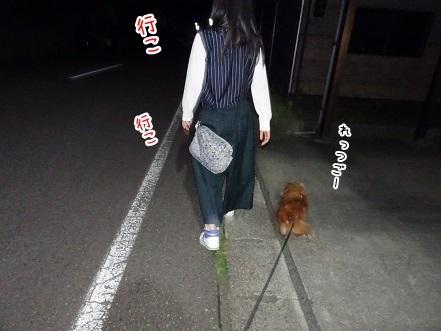 kinako7921.jpg