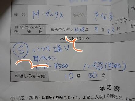 kinako7995.jpg