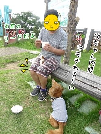 kinako8066.jpg
