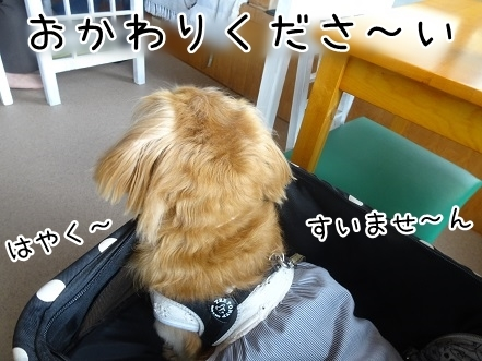 kinako8094.jpg
