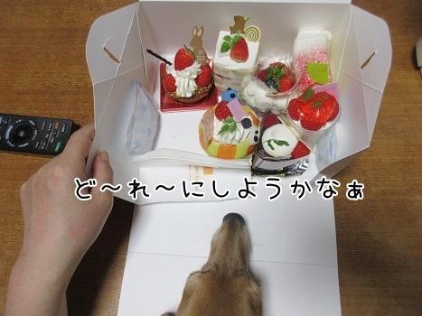 kinako8268.jpg