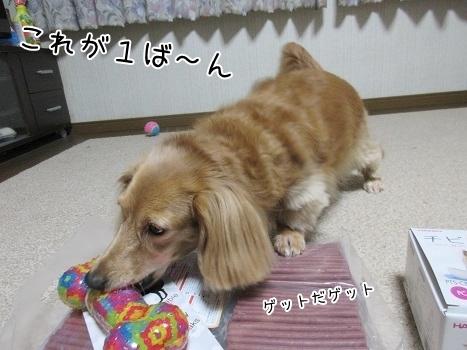 kinako8274.jpg