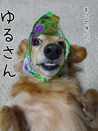 kinako8315.jpg