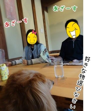 kinako8406.jpg