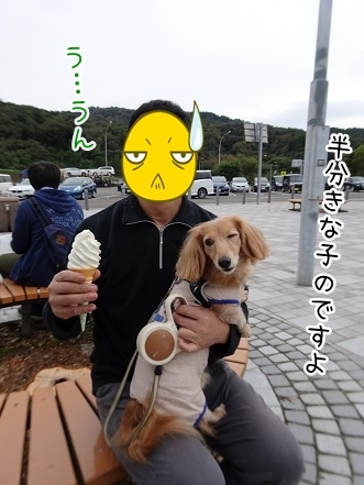 kinako8411.jpg