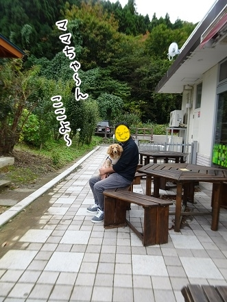 kinako8413.jpg