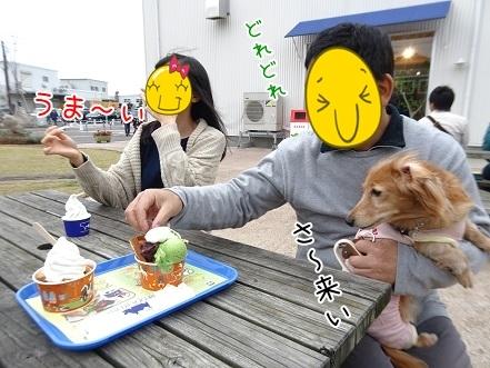 kinako8462.jpg