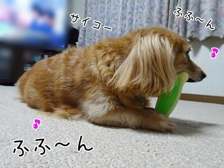 kinako8480.jpg