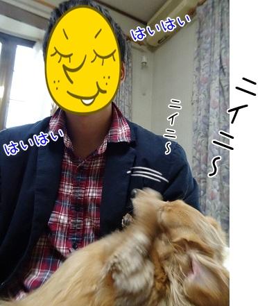 kinako8569.jpg
