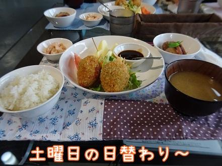 kinako8575.jpg