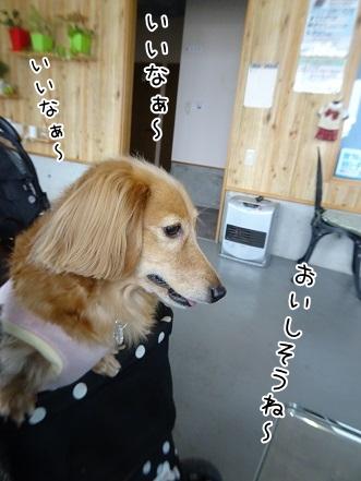 kinako8576.jpg