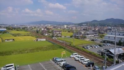 富田林の景色