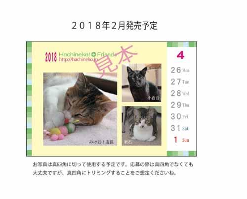 IMG_8328のコピー