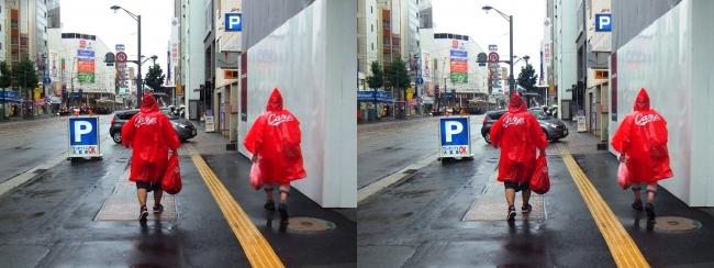 雨の広島市内散策 2017.9.17(平行法)