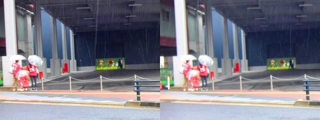 広島カープ屋内練習場 2017.9.17①(平行法)