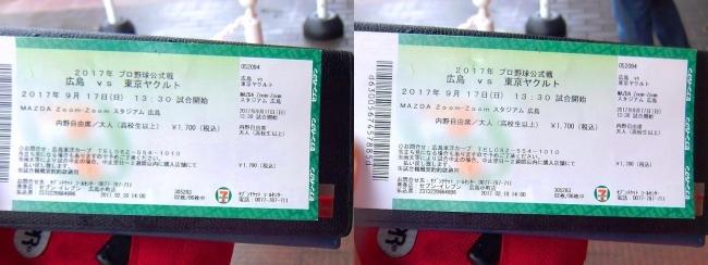 幻のマジック1チケット 2017.9.17(交差法)