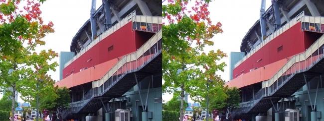 MAZDA ZOOM-ZOOM スタジアム 広島 2017.10.21②(平行法)