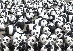 01 300 many pandas