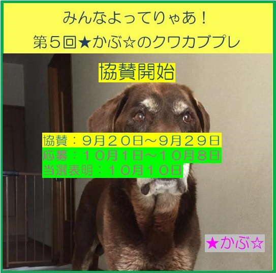 201709192331190c9.jpg