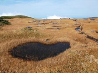 静かな池塘帯