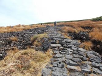 草黄葉の石畳みの道を行く