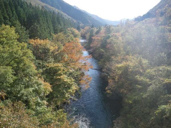 天竜橋下流