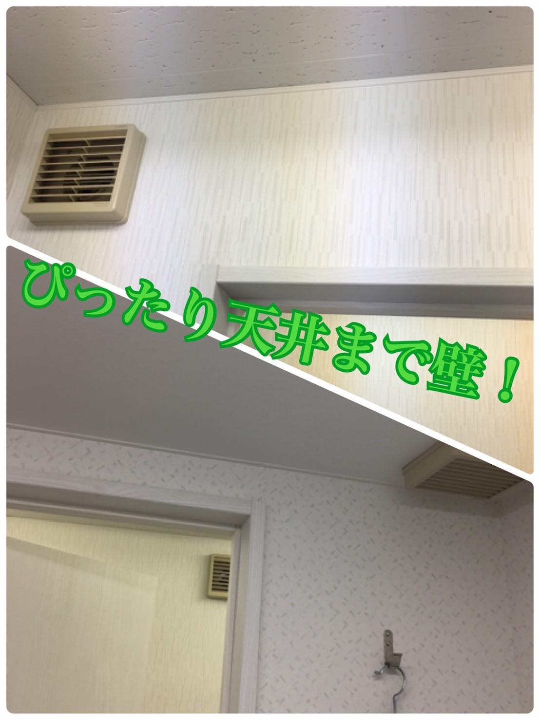 S__34979842.jpg