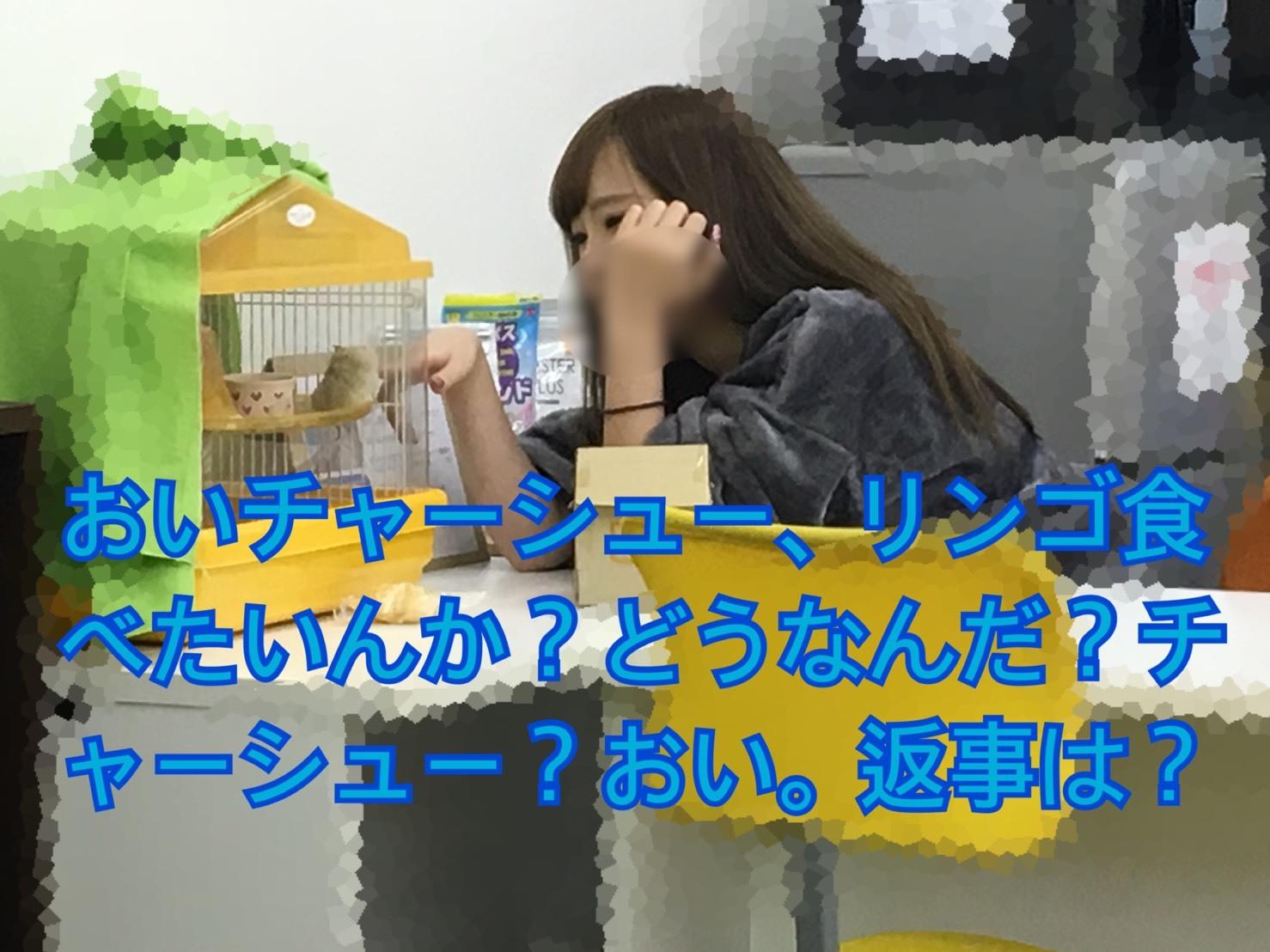 S__35741706.jpg