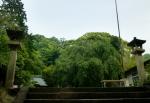 伊豆山神社01-07