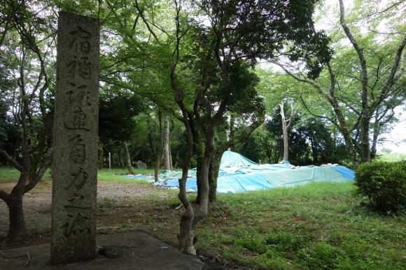相撲神社10