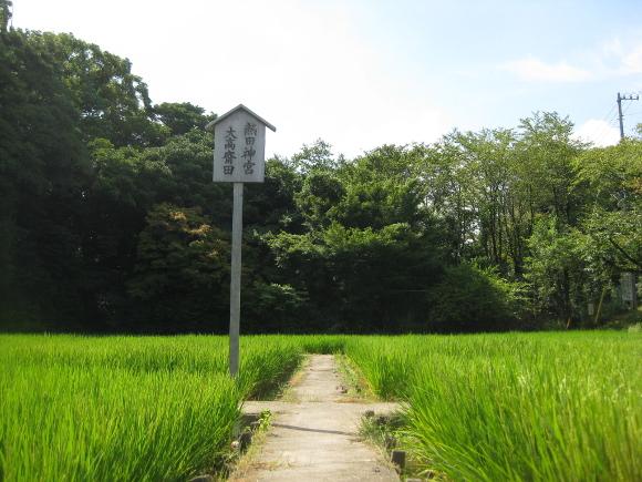 玉根社と大高斎田14