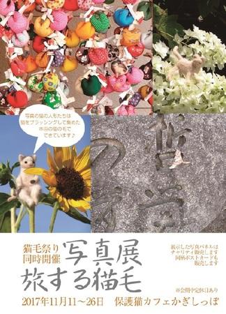 猫毛祭りinほくせつ2017_3旅する猫毛☆