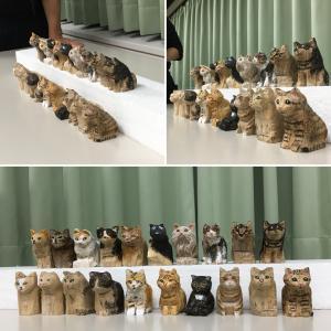 お座り猫201710_3☆