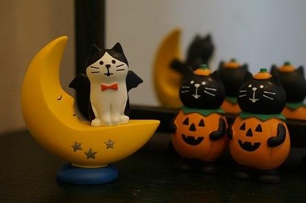 カワイイデビル猫とカボチャコスプレの猫