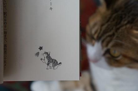 猫絵もちゃんと。