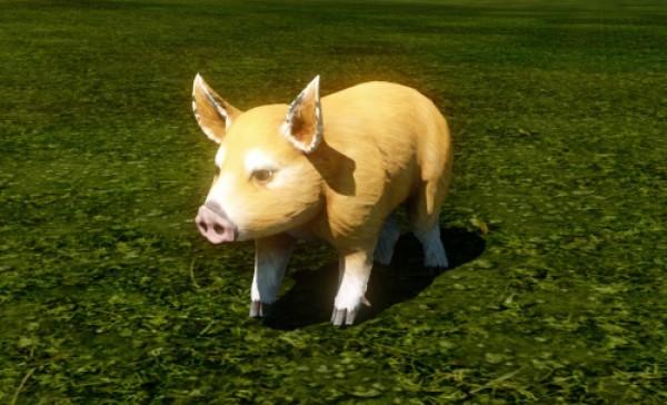 自由系オンラインRPG『アーキエイジ』 特別な戦闘ペットなどが手に入る「ArcheAgeカウントダウン」イベントを開催